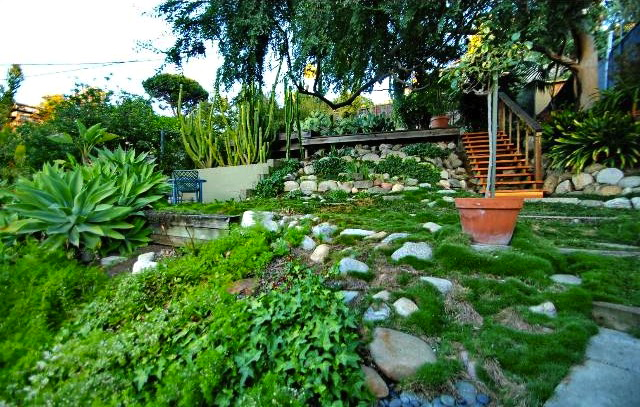 Terraced yard and patio